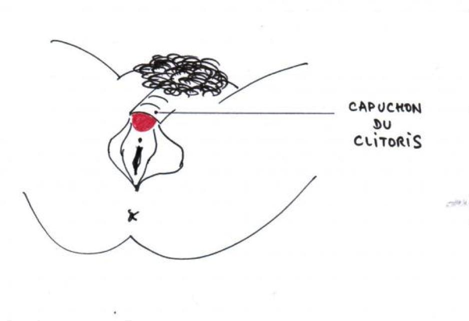 Capuchon du clitoris