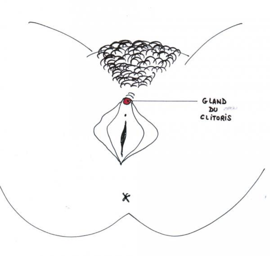 gland du clitoris